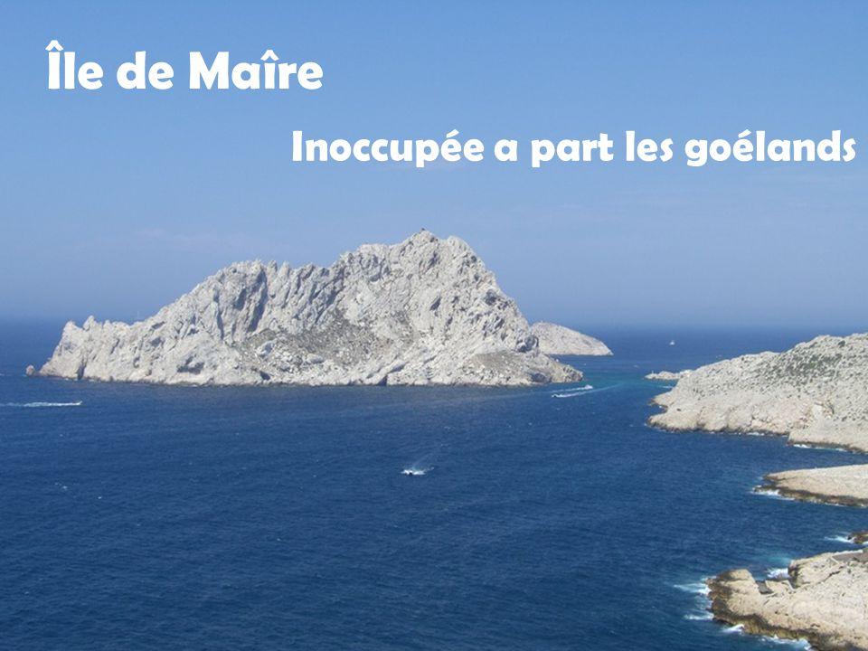 Île Degaby et île d'Endoume