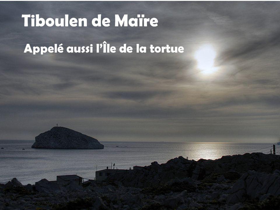 Île de Maîre Inoccupée a part les goélands