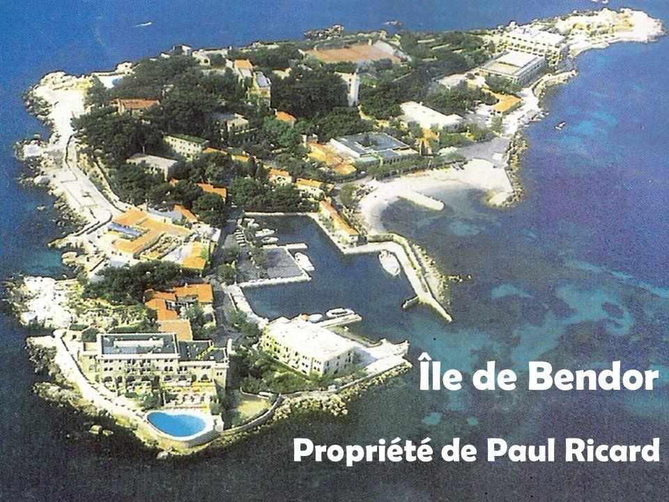 Île Verte Seule île véritablement boisée du littoral des bouches du Rhône