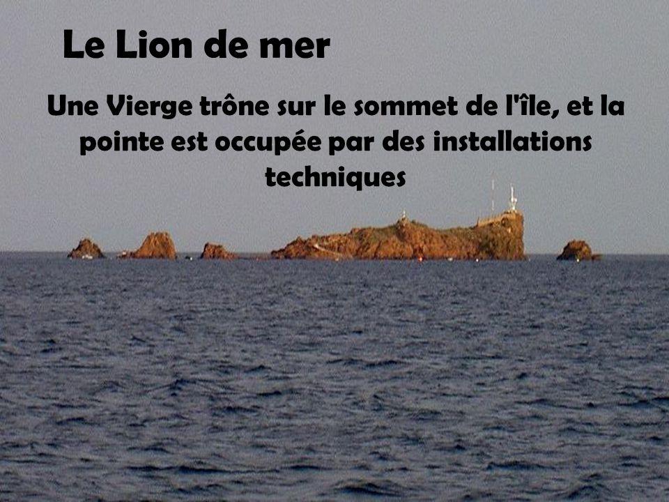 Le Lion de terre dans la baie de Saint Raphaël