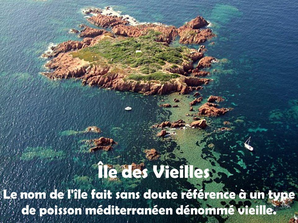 L'Ile d'Or on dit quelle aurait inspirée Hergé pour album de tintin l'Ile noire