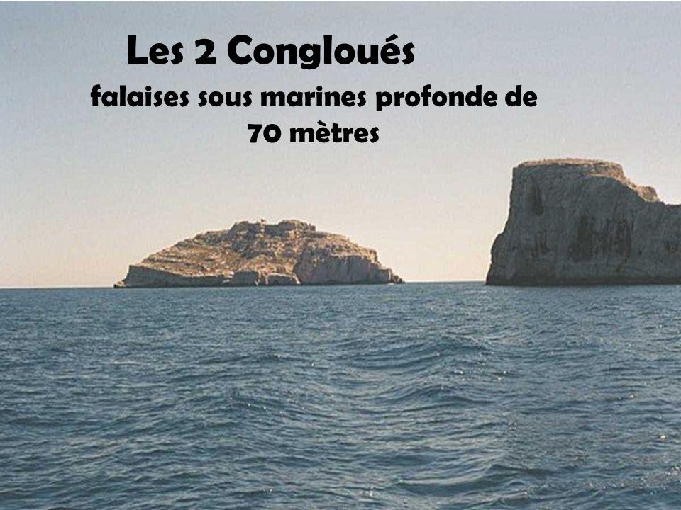 îlot de la Redonne Inhabitée au nord de la presqu'ile de Gien