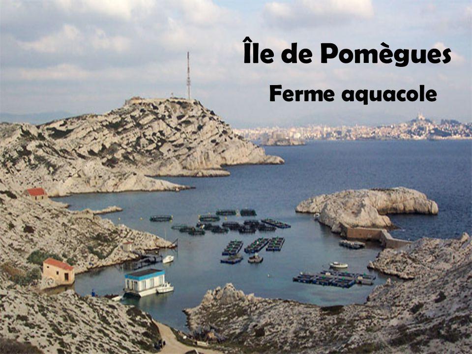 Île de Pomègues Ferme aquacole