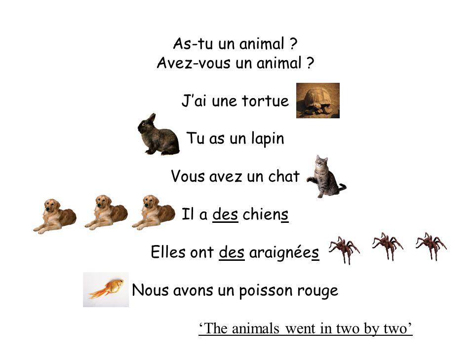 AVOIR – verbe irrégulier (to have) avons / avez / a / as / ai / ont / AVOIRto have j' I have tuyou have il/elle/onhe/she/it has nouswe have vousyou have ils/ellesthey have