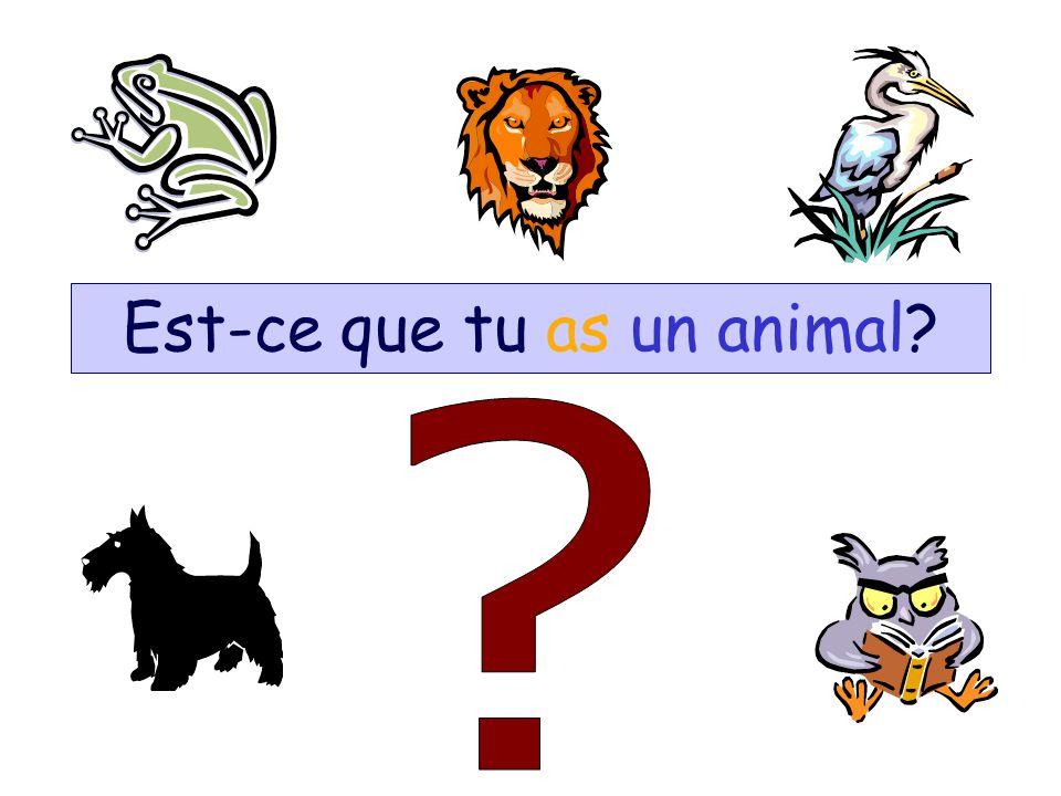 Est-ce que tu as un animal?