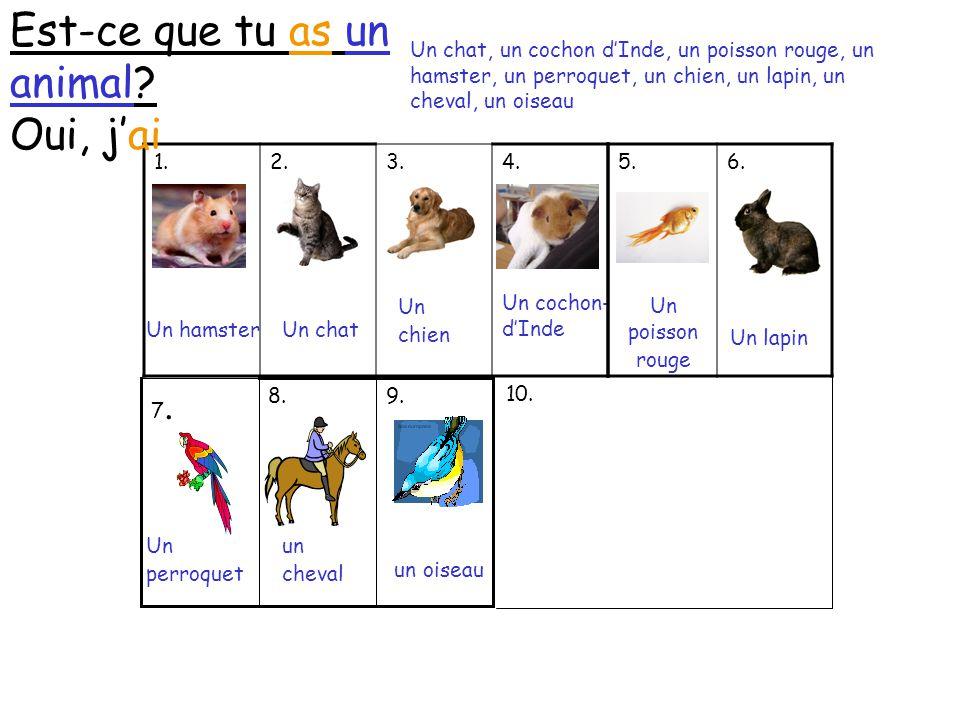 1.2.3.4.Est-ce que tu as un animal. Oui, j'ai Un hamsterUn chat Un chien Un cochon- d'Inde 5.6.