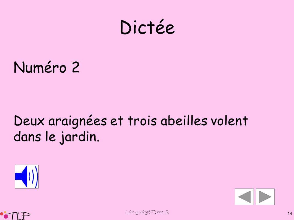 Language Term 2 13 Dictée Numéro 2