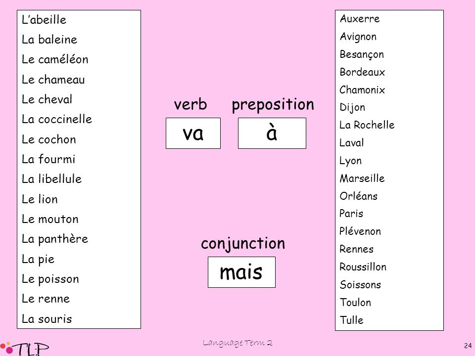Language Term 2 23 Où vont….