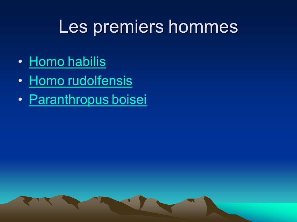 Homo habilis Age : 2,4 à 1,6 Ma Région: Afrique orientale et australe Habitat :savanes arborées humides Taille: 1,30m et 40 kg (mâle); 1,15m et 30 kg (femelle) Crâne: volume cérébral entre 550 et 680 cm 3.