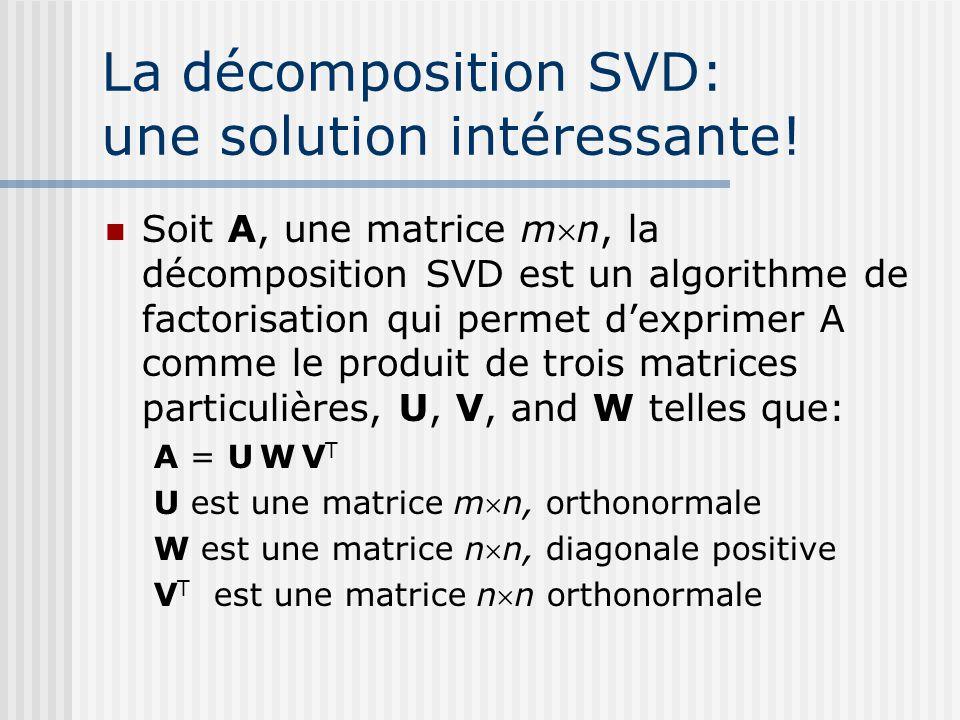 La décomposition SVD: une solution intéressante.