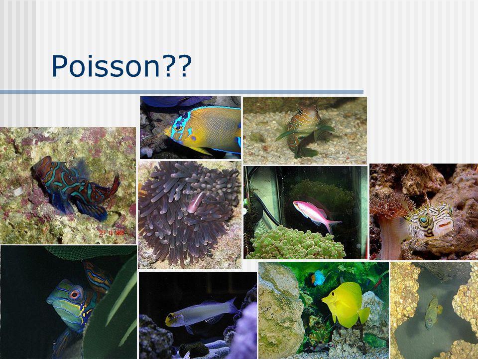 4 Poisson??
