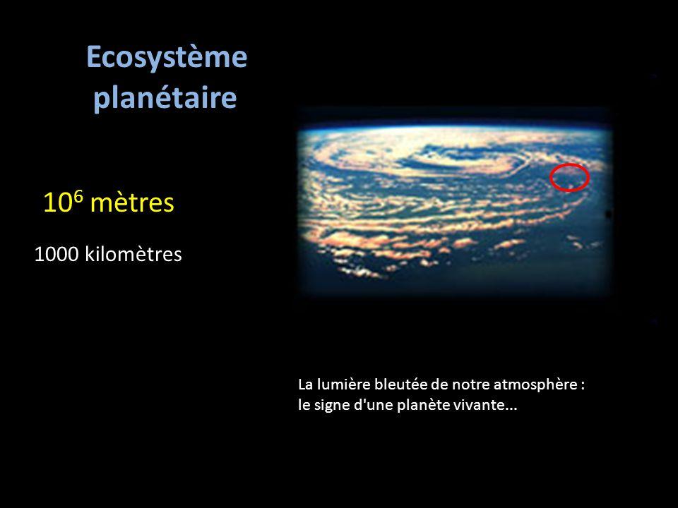 10 6 mètres 1000 kilomètres Ecosystème planétaire La lumière bleutée de notre atmosphère : le signe d une planète vivante...
