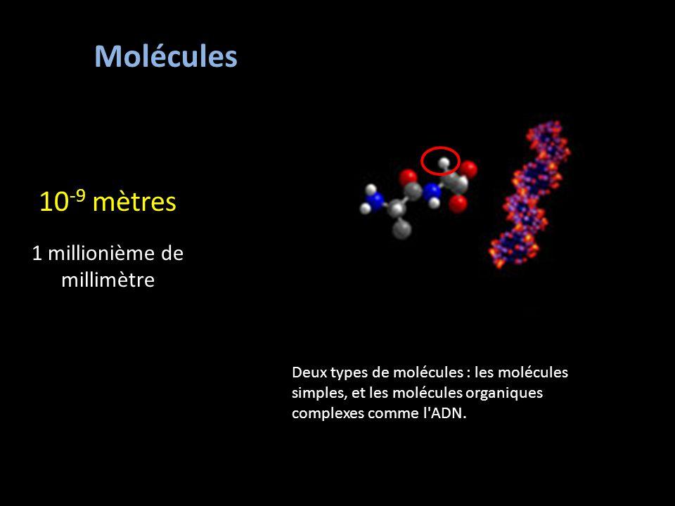 Molécules 10 -9 mètres 1 millionième de millimètre Deux types de molécules : les molécules simples, et les molécules organiques complexes comme l ADN.