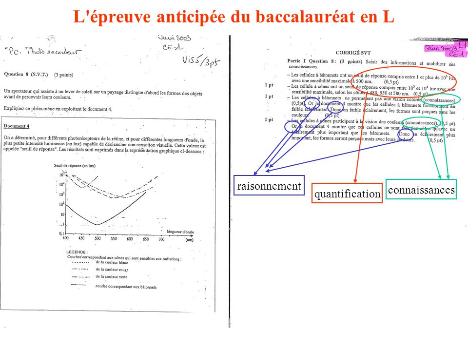 L épreuve anticipée du baccalauréat en L quantification raisonnement connaissances