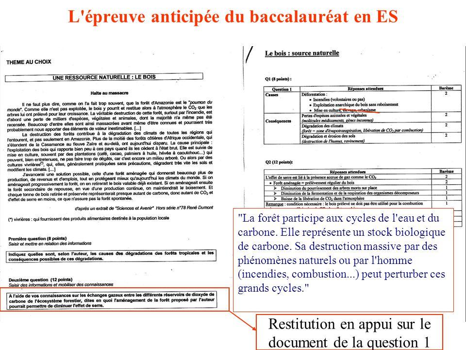 Restitution en appui sur le document de la question 1 La forêt participe aux cycles de l eau et du carbone.