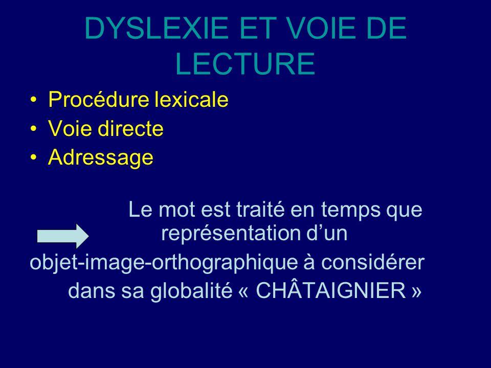 DYSLEXIE ET VOIE DE LECTURE Procédure lexicale Voie directe Adressage Le mot est traité en temps que représentation d'un objet-image-orthographique à considérer dans sa globalité « CHÂTAIGNIER »