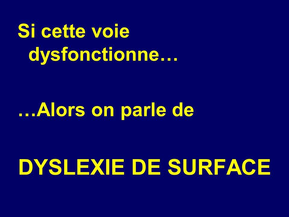 Si cette voie dysfonctionne… …Alors on parle de DYSLEXIE DE SURFACE