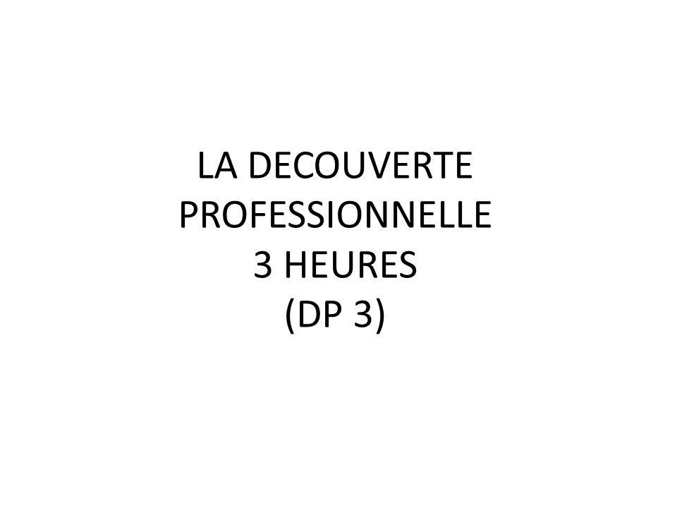 LA DECOUVERTE PROFESSIONNELLE 3 HEURES (DP 3)