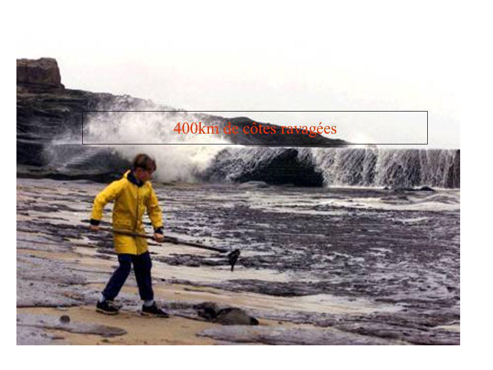 400km de côtes ravagées