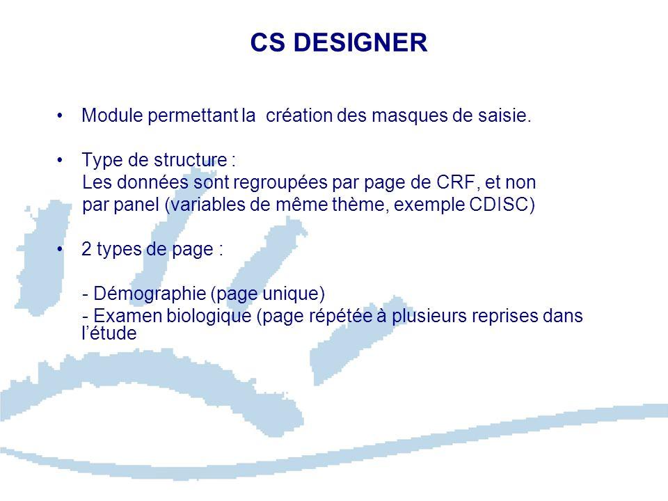 CS DESIGNER Module permettant la création des masques de saisie.