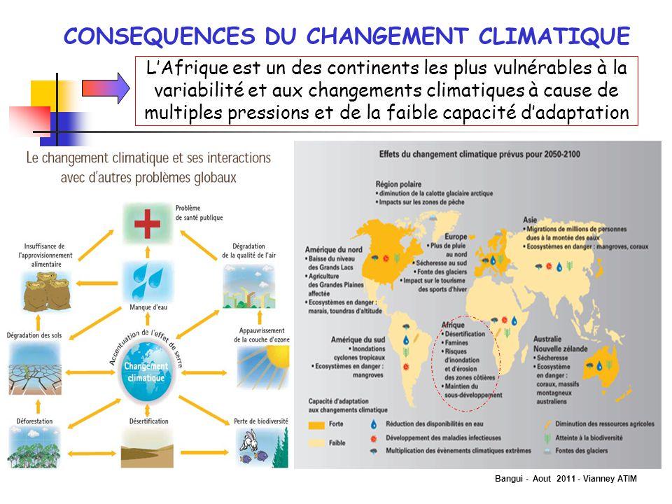 Bangui - Aout 2011 - Vianney ATIM CONSEQUENCES DU CHANGEMENT CLIMATIQUE L'Afrique est un des continents les plus vulnérables à la variabilité et aux c