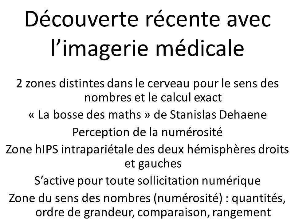 Découverte récente avec l'imagerie médicale 2 zones distintes dans le cerveau pour le sens des nombres et le calcul exact « La bosse des maths » de Stanislas Dehaene Perception de la numérosité Zone hIPS intrapariétale des deux hémisphères droits et gauches S'active pour toute sollicitation numérique Zone du sens des nombres (numérosité) : quantités, ordre de grandeur, comparaison, rangement