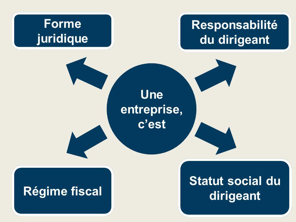  Impôt sur le revenu  Micro fiscal simplifié  Micro fiscal (réel simplifié, réel normal, impôt sur les sociétés)  Régime général  Travailleur non