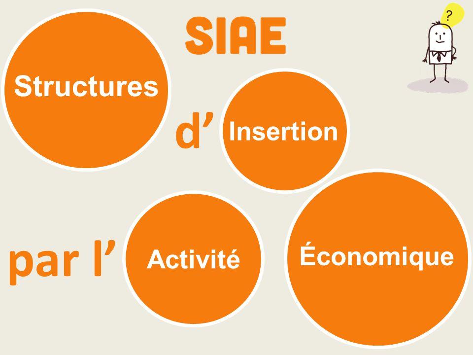 Activité Économique Insertion Structures d' par l'