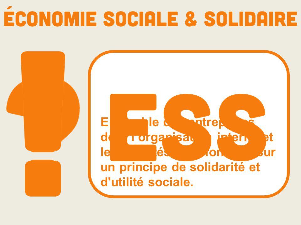 Ensemble des entreprises dont l'organisation interne et les activités sont fondées sur un principe de solidarité et d'utilité sociale.