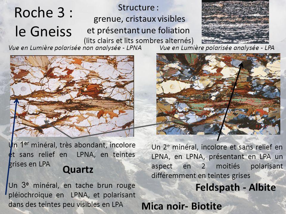 Vue en Lumière polarisée non analysée - LPNAVue en Lumière polarisée analysée - LPA Un 2 e minéral, incolore et sans relief en LPNA, en LPNA, présenta