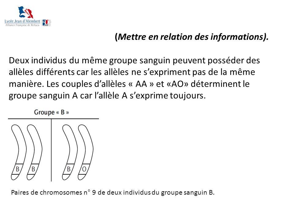 (Mettre en relation des informations). Deux individus du même groupe sanguin peuvent posséder des allèles différents car les allèles ne s'expriment pa