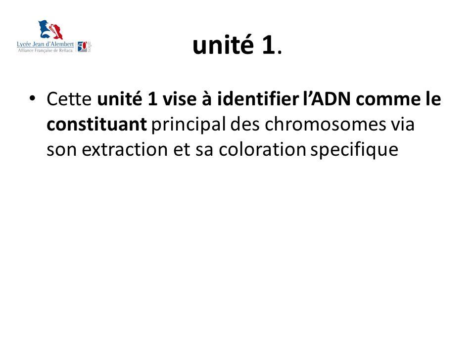 unité 1. Cette unité 1 vise à identifier l'ADN comme le constituant principal des chromosomes via son extraction et sa coloration specifique