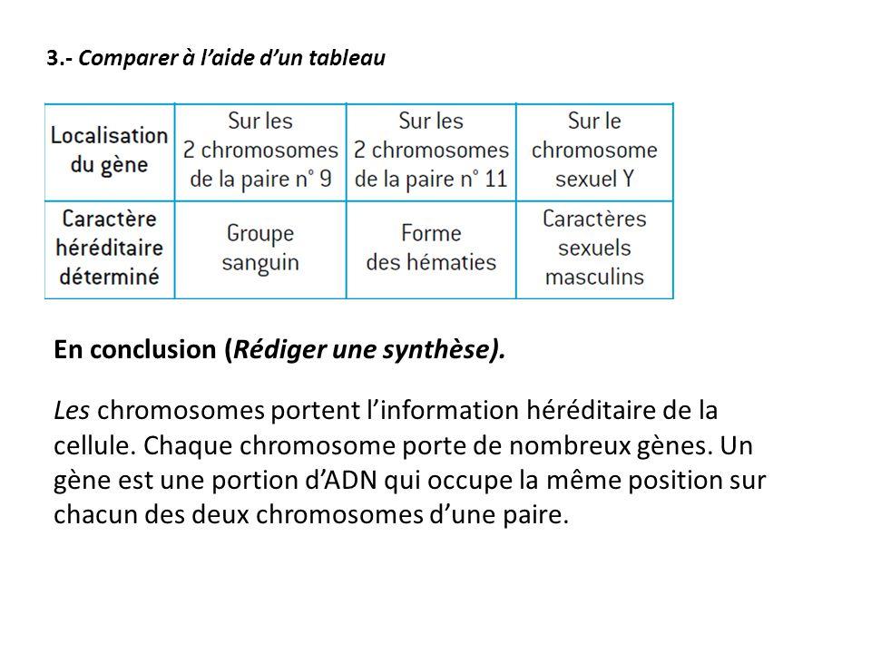 En conclusion (Rédiger une synthèse). Les chromosomes portent l'information héréditaire de la cellule. Chaque chromosome porte de nombreux gènes. Un g