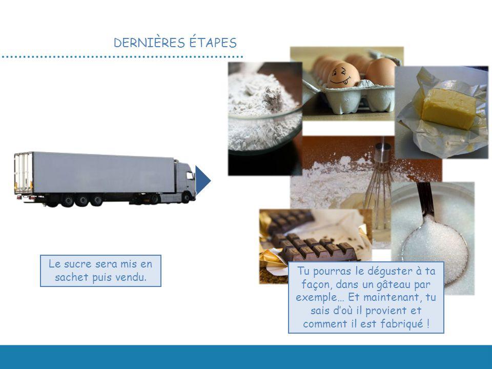 DERNIÈRES ÉTAPES Le sucre sera mis en sachet puis vendu. Tu pourras le déguster à ta façon, dans un gâteau par exemple… Et maintenant, tu sais d'où il