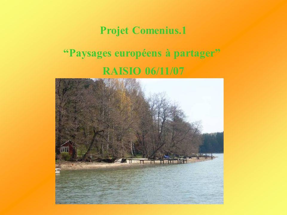 Projet Comenius.1 Paysages européens à partager RAISIO 06/11/07