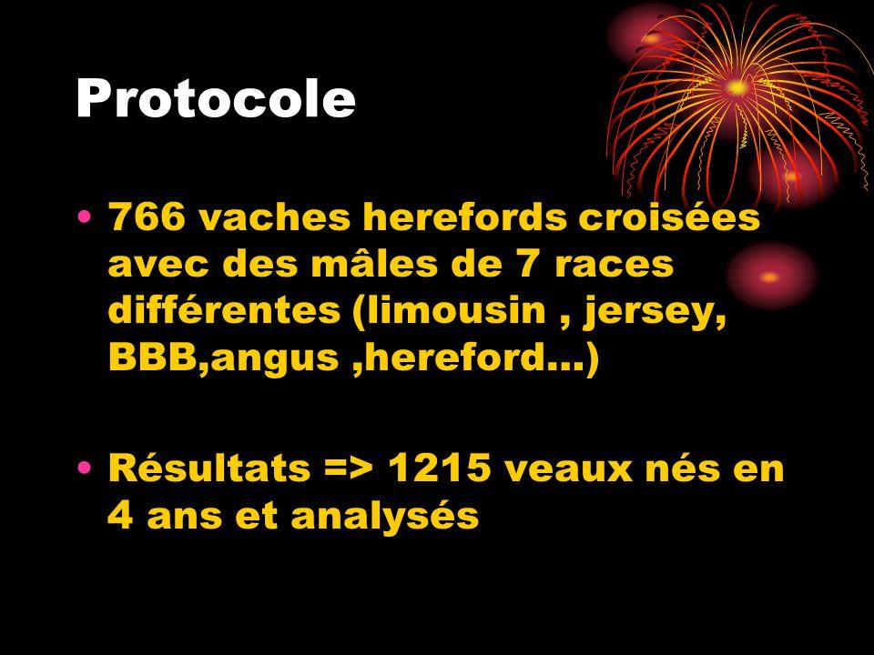 Protocole 766 vaches herefords croisées avec des mâles de 7 races différentes (limousin, jersey, BBB,angus,hereford…) Résultats => 1215 veaux nés en 4
