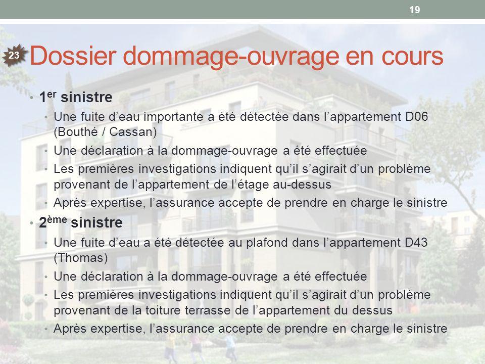 Dossier dommage-ouvrage en cours 1 er sinistre Une fuite d'eau importante a été détectée dans l'appartement D06 (Bouthé / Cassan) Une déclaration à la