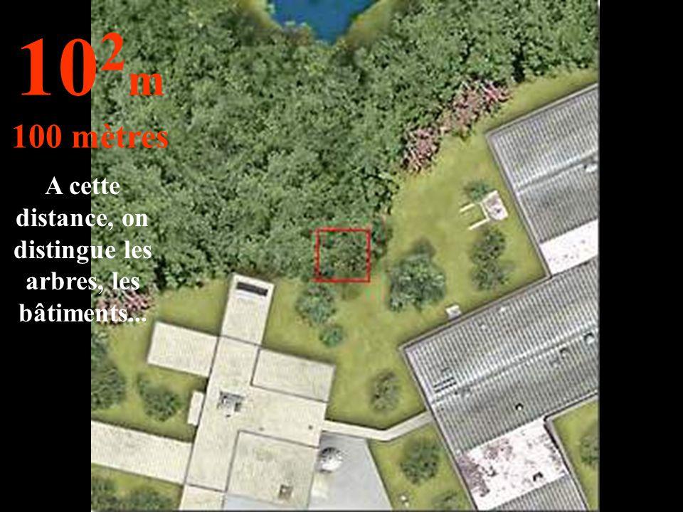 A cette distance, on distingue les arbres, les bâtiments... 10 2 m 100 mètres