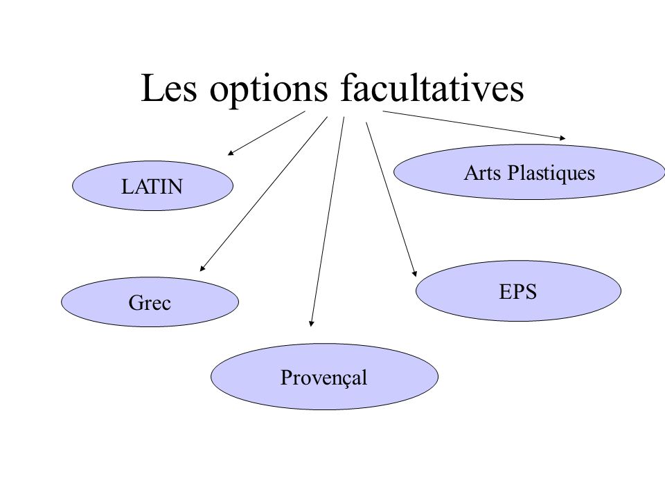 Les options facultatives LATIN Grec Arts Plastiques EPS Provençal