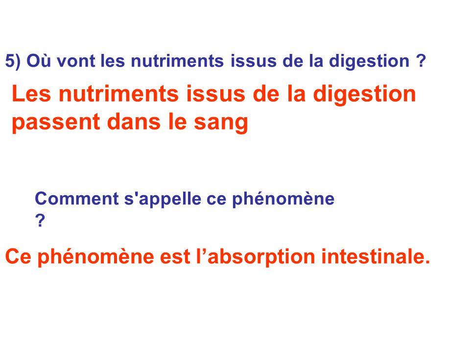 5) Où vont les nutriments issus de la digestion ? Ce phénomène est l'absorption intestinale. Les nutriments issus de la digestion passent dans le sang
