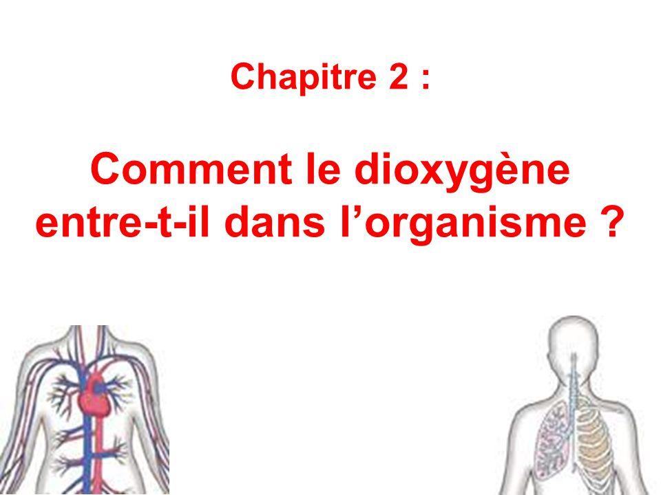Chapitre 2 : Comment le dioxygène entre-t-il dans l'organisme ?