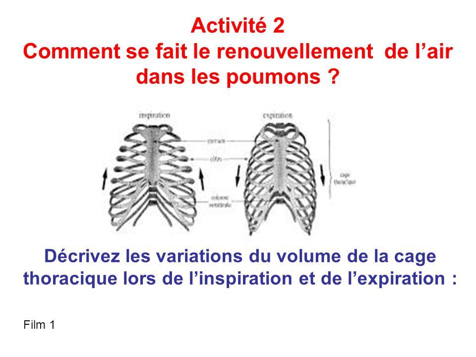 Activité 2 Comment se fait le renouvellement de l'air dans les poumons .