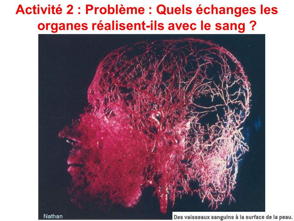 Activité 2 : Problème : Quels échanges les organes réalisent-ils avec le sang ? Nathan