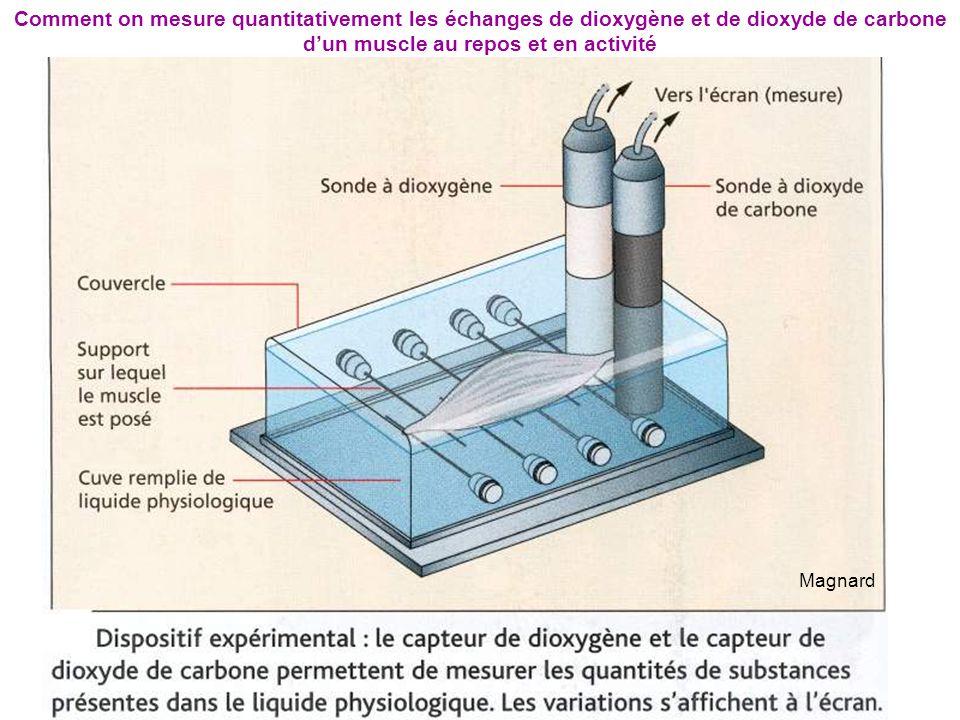 Magnard Comment on mesure quantitativement les échanges de dioxygène et de dioxyde de carbone d'un muscle au repos et en activité
