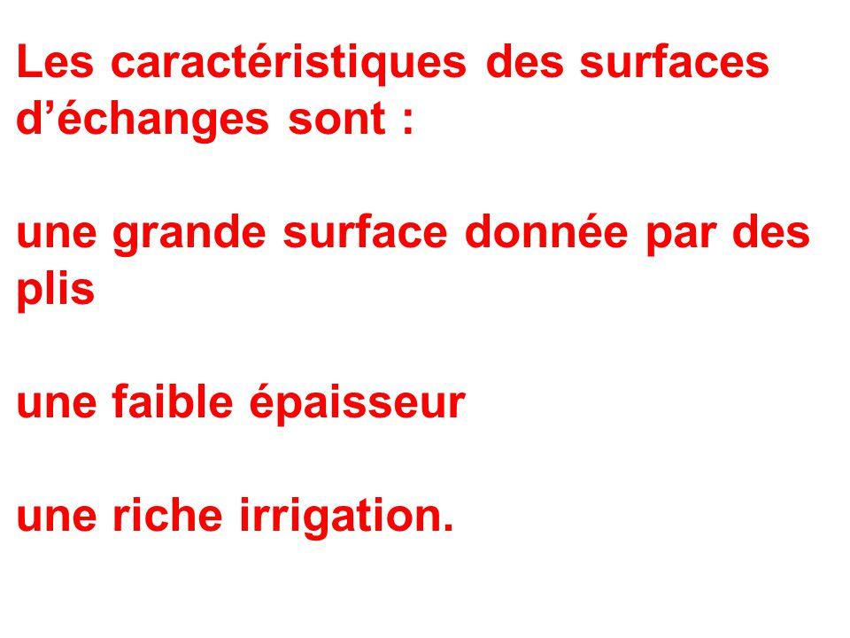 Les caractéristiques des surfaces d'échanges sont : une grande surface donnée par des plis une faible épaisseur une riche irrigation.