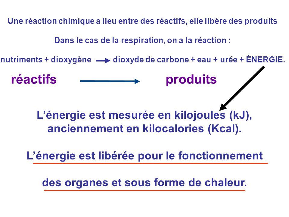 Une réaction chimique a lieu entre des réactifs, elle libère des produits Dans le cas de la respiration, on a la réaction : nutriments + dioxygène dio