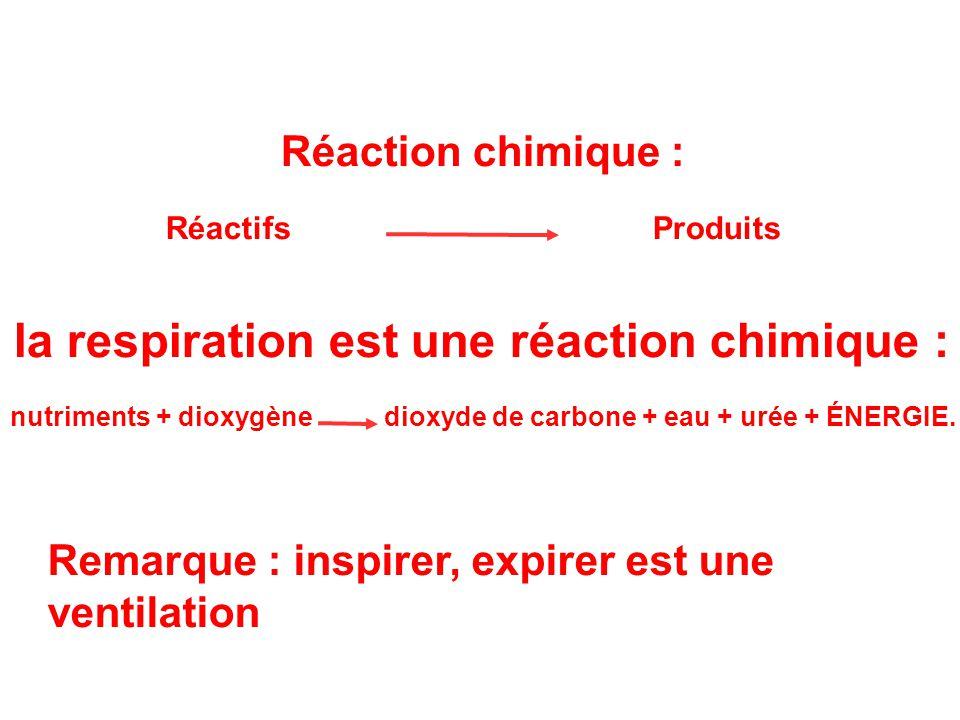 Réaction chimique : Réactifs Produits la respiration est une réaction chimique : nutriments + dioxygène dioxyde de carbone + eau + urée + ÉNERGIE. Rem