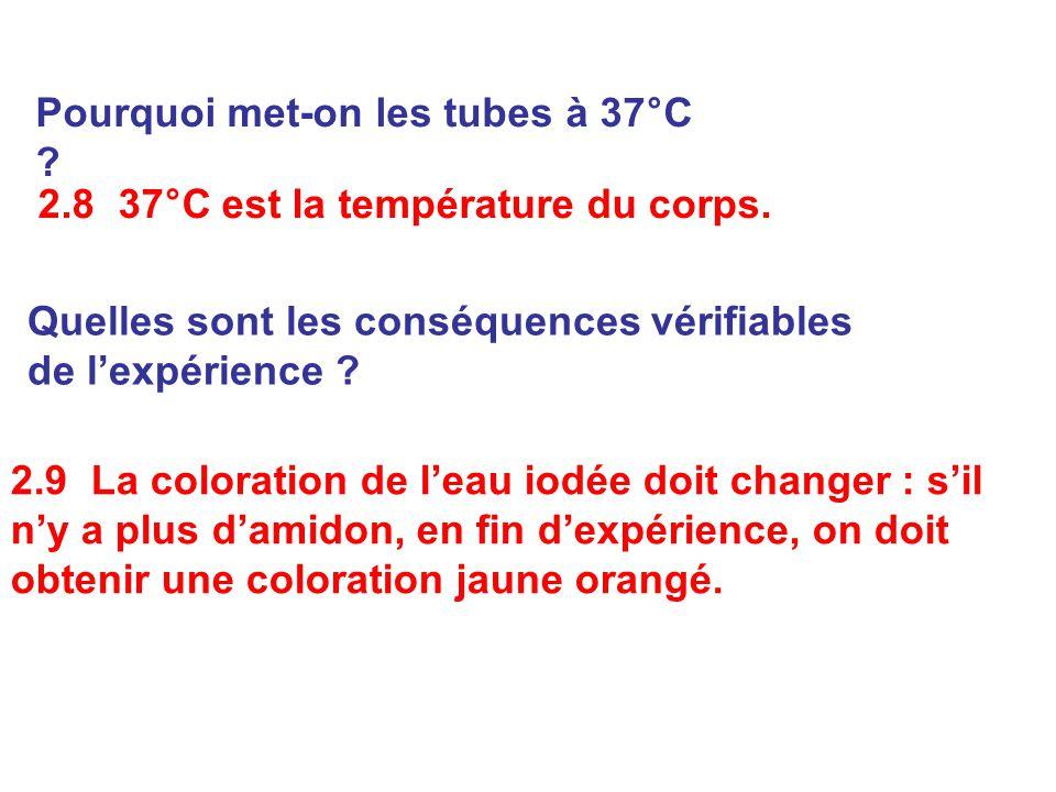 2.9 La coloration de l'eau iodée doit changer : s'il n'y a plus d'amidon, en fin d'expérience, on doit obtenir une coloration jaune orangé. 2.8 37°C e