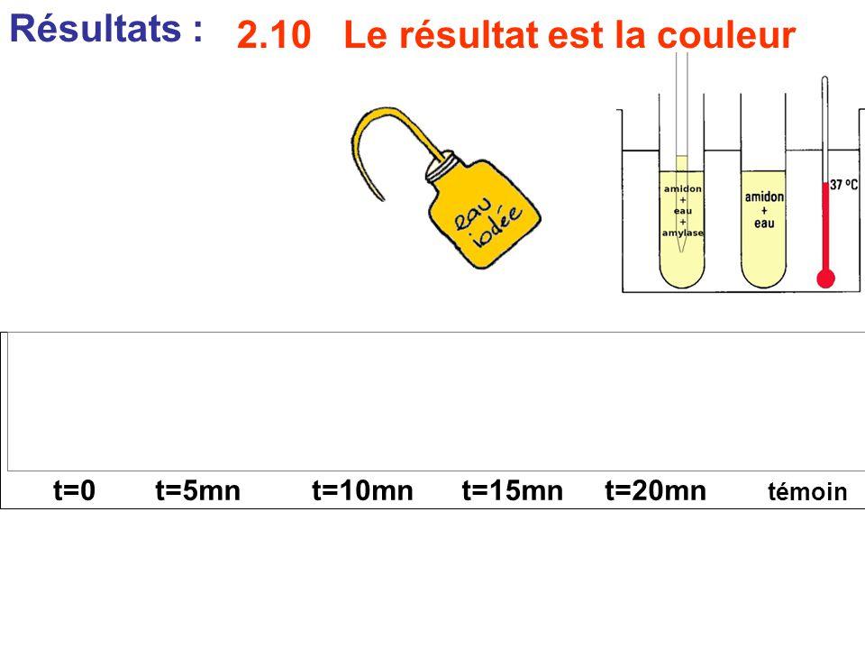 Résultats : témoin t=0t=5mnt=10mnt=15mnt=20mn 2.10 Le résultat est la couleur