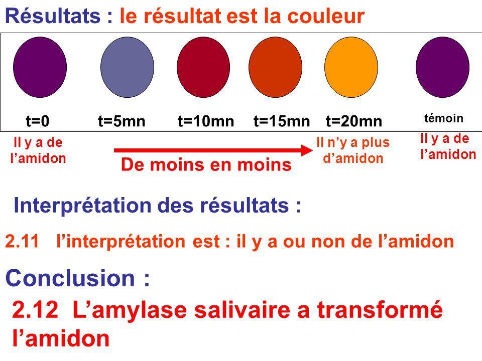 Résultats : le résultat est la couleur 2.11 l'interprétation est : il y a ou non de l'amidon témoin t=0t=5mnt=10mnt=15mnt=20mn Conclusion : Il y a de